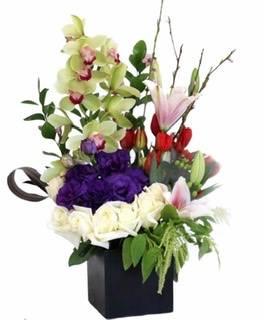 Embrace Florist Designs