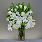 Embrace of Purity Arrangement