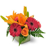 Embrace the Warmth Fall arrangement