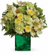 Emerald Elegance HEV2626A