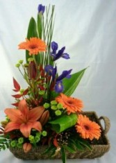 Enchanted Garden Basket Arrangement
