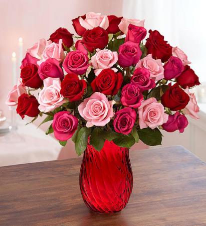 Enchanted Rose Medley Bouquet 36 Stem Assorted Color Roses