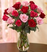 Enchanted Roses 18 Premium Stems Valentine's