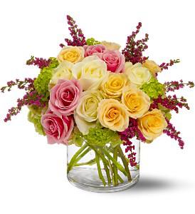 Telaflora Enchanted Roses  in Allen, TX | Lovejoy Flower and Gift Shop