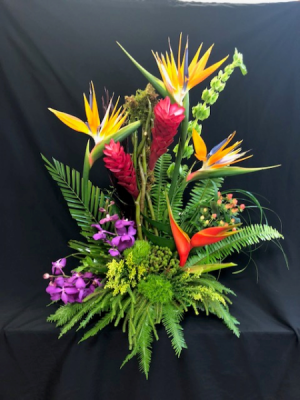 Enchanted Tropical Splash  in Cape Coral, FL | ENCHANTED FLORIST OF CAPE CORAL