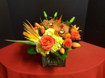 "Enchanted Tropicals in Cube Bird of Paradise, Roses and Hydrangea 12"" Tall"
