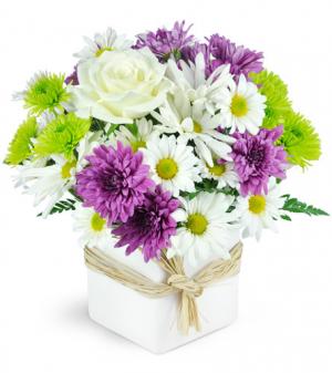 Enchanting Maui All-around Floral arrangement in Winnipeg, MB   KINGS FLORIST LTD