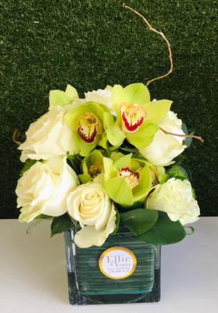 Enchanting Orchids Arrangement