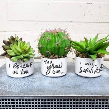 """Encouraging"" Artificial Plant Trio"