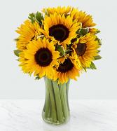 Endless Summer Sunflower Bouquet .WGFB68-N