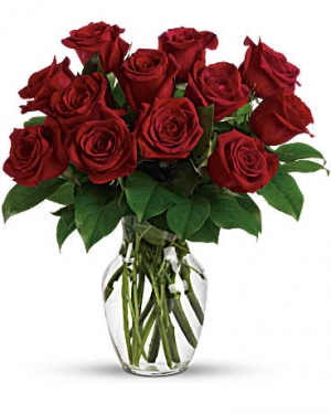 Enduring Passion  in Stafford, VA | Peg's Florist