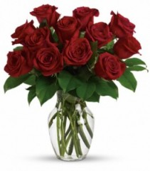 Long Stem Red Roses Sending Love with Roses