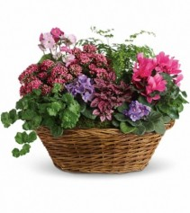 English Garden Basket EN-3P