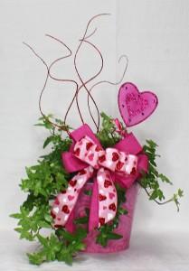 Ivy Valentine's Day