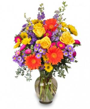 Better Than Ever Bouquet in Clinton, MA | VARISE BROS. FLORIST