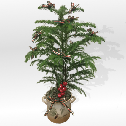 Ensign Christmas Pine Bough Christmas Arrangement