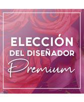 Envíe un Diseño Exquisito Elección Del Diseñador Premium