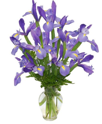 RAMO DE LIRIOS AZULES Arreglo Floral