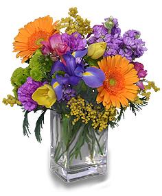 Feliz Cumpleaños Ramo Floral