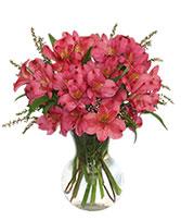 LILIES DE COLOR ROSA PURO Arreglo Floral