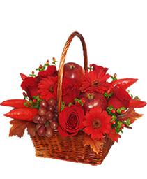 ROJO CALIENTE Canasta Floral
