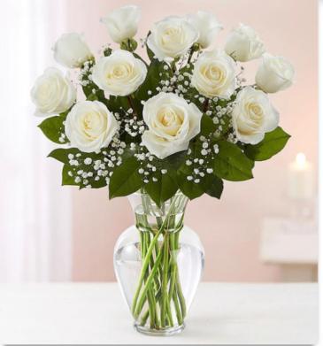 Eskimo White Roses Roses
