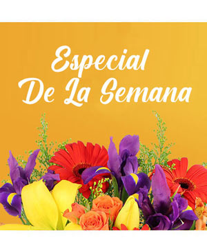 Especial De La Semana Arreglo Personalizado in Laguna Niguel, CA | Reher's Fine Florals And Gifts