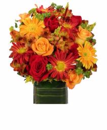 Essence of Fall Cut flowers