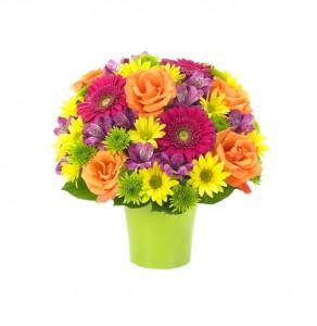 Essentials Brilliant Bouquet  in Clearwater, FL | FLOWERAMA