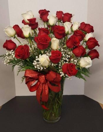 Love's Divine 24 Rose Bqt