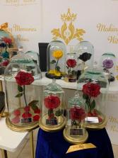 Eternal Royalty Roses Gold Edition Beauty & Beast Eternal Roses