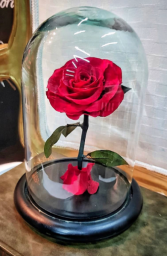 Eternal Royalty Roses Small Eternal Roses