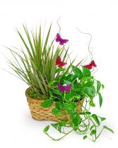 Ethereal Garden Basket Flower Arrangement