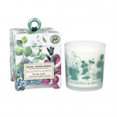 Eucalyptus and Mint candle Soy Candle