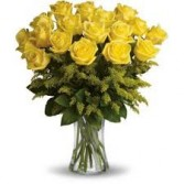 Eureka Yellow  2 Dozen Roses