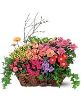 Euro Garden Basket