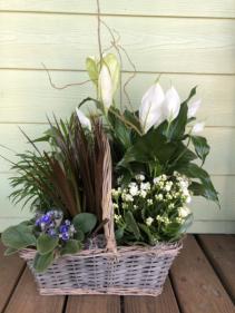Large European Garden Plant Basket