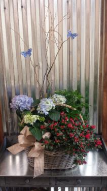 European Garden Basket of Blooming Plants