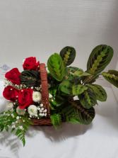 European Garden w/Flowers