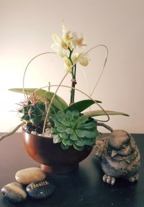 Ever Green small Orchid arrangement plants