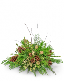 Evergreen Simplicity Centerpiece