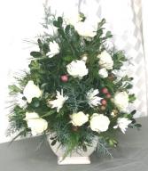Evergreen Tree Dish Arrangement