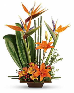 Exotic Garden Tropical Flower Arrangement in Largo, FL | Rose Garden Florist