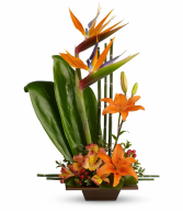 Exotic Grace Fresh Arrangement