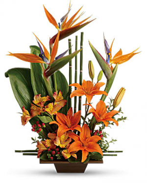 Exotic Grace One-sided Arrangement in Osoyoos, BC | Osoyoos Flowers
