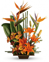 Exotic Grace Tropical Arrangement
