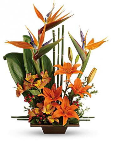 Exotic Grace Tropical Arrangement