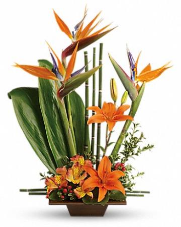 Exotic Grace Tropical Flower