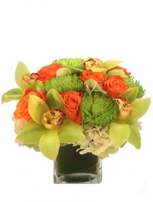 Exotic Greenness Bouquet in Glastonbury, CT | THE FLOWER DISTRICT