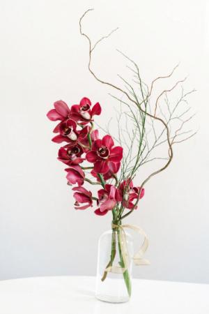 Exotic Mini Cymbidium Vase Vased Arrangement, Modern